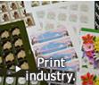 Print industry.